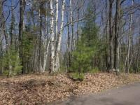 ON Wilderness Tr #Lot 5, Eagle River, WI 54521