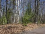 1798 Wilderness Tr #Lot 5, Eagle River, WI 54521 photo 0