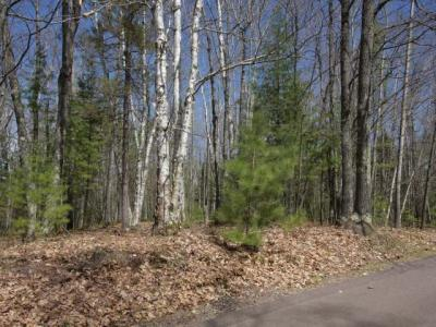 1798 Wilderness Tr #Lot 5, Eagle River, WI 54521