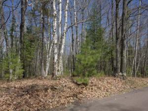 1798 Wilderness Tr #Lot 5, Eagle River, WI 54521