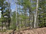 1798 Wilderness Tr #Lot 5, Eagle River, WI 54521 photo 4