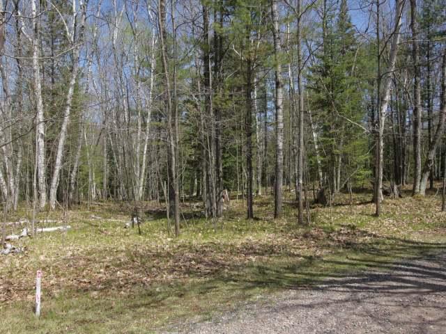 1798 Wilderness Tr #Lot 7, Eagle River, WI 54521