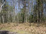 1798 Wilderness Tr #Lot 7, Eagle River, WI 54521 photo 3