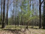 1798 Wilderness Tr #Lot 7, Eagle River, WI 54521 photo 4