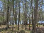 1798 Wilderness Tr #Lot 8, Eagle River, WI 54521 photo 0