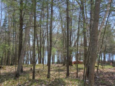 1798 Wilderness Tr #Lot 8, Eagle River, WI 54521
