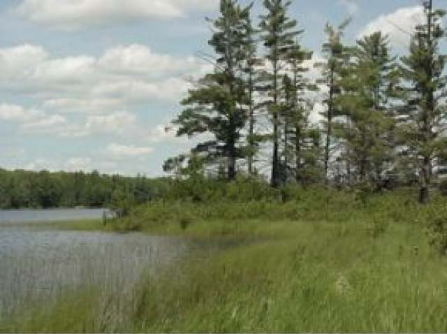 LOT 3 ON Hwy 17, Lincoln, WI 54521