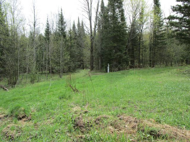 ON Coveyville Rd #41.25 Acre, Phelps, WI 54554