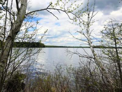 ON Lehman Rd, Three Lakes, WI 54562