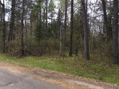 Photo of Lot #3 Hegemann Rd, Conover, WI 54919