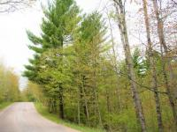 ON Zeman Rd, Eagle River, WI 54521