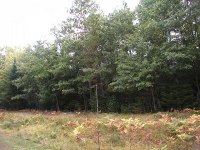 Photo of Lot 8 Old Hwy 70, St Germain, WI 54552