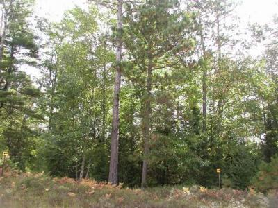 Photo of Lot 9 Old Hwy 70, St Germain, WI 54552