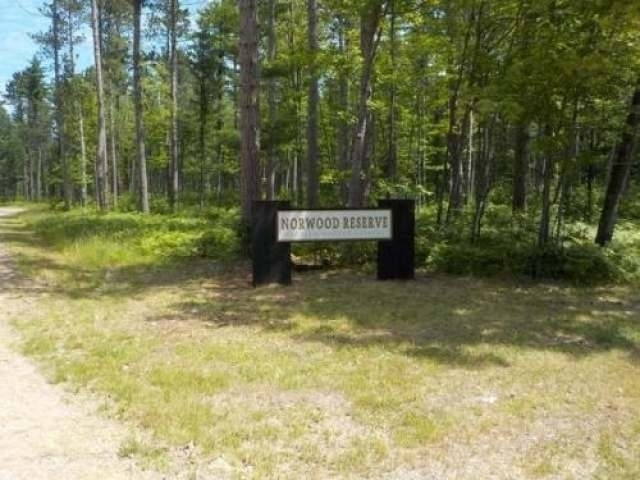 Lot 1 Norwood Dr, St Germain, WI 54558