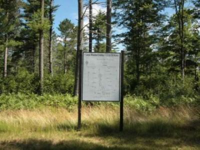 Photo of Lot 4 Norwood Dr, St Germain, WI 54558