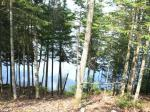 2046 Wilderness Ct, Eagle River, WI 54521 photo 2