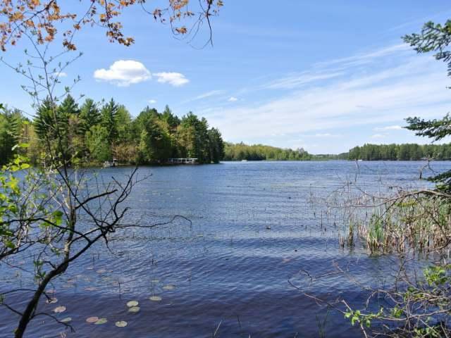 ON Bonkowski Rd, Three Lakes, WI 54562