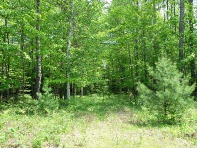 Photo of Lot 10 Pinehurst Dr, Lake Tomahawk, WI 54539