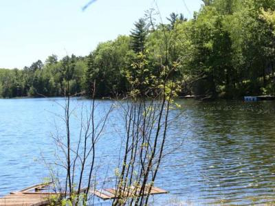 Photo of ON Townline Lake Rd, Newbold, WI 54501