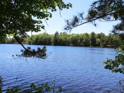 Photo of ON Forest Ln, Newbold, WI 54501