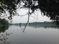 Lot 1 River Rd, Lake Tomahawk, WI 54539