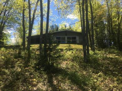 8464 Green Bass Rd, Eagle River, WI 54562