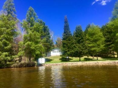 5652 Rush Rd, Conover, WI 54519