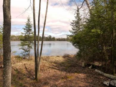 Lot #3 Hansen Ln, Three Lakes, WI 54562
