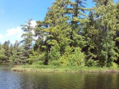 ON Pokegama Lake Tr, Lac Du Flambeau, WI 54538