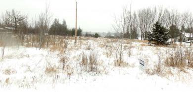 Lot 11 Row Rd, Merrill Township, WI 54452