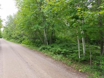 Photo of ON Lake O Pines Ln #Lots 1 & 2, Land O Lakes, WI 54540