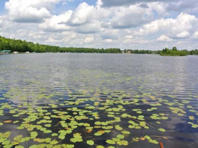 Lot 6 Squaw Lake Rd W, Minocqua, WI 54548