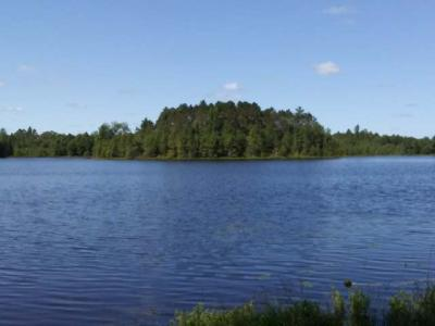 Photo of Lot 1 Cold Water Dr, Sayner, WI 54560
