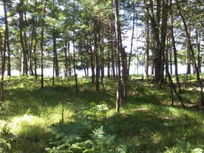 Photo of Lot 2 Cold Water Dr, Sayner, WI 54560