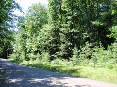 Photo of ON Mcpeak Rd, Conover, WI 54519