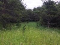Lot D Rapps Rd, Woodruff, WI 54548