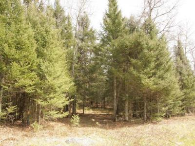 Photo of ON Cth N #Lot 2, Sayner, WI 54560