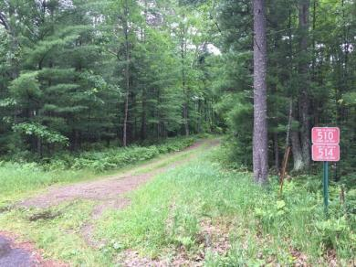 514 Spring Lake Rd, Eagle River, WI 54521
