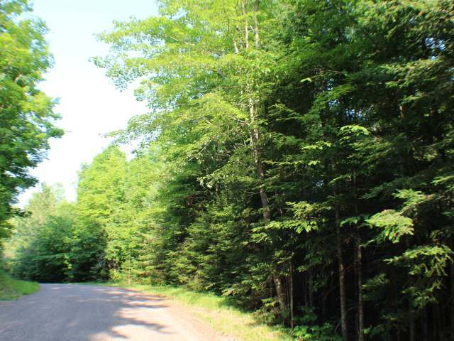 ON Deer Trail Rd, Presque Isle, WI 54557