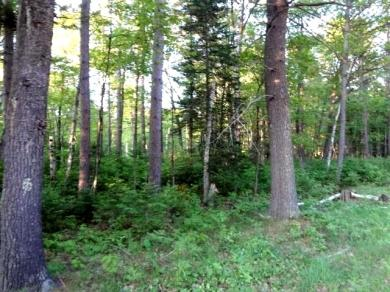 Lot 11 Lost Lake Dr W, St Germain, WI 54558