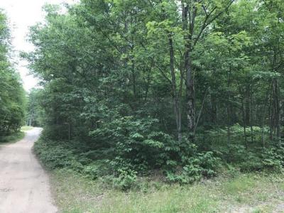 Photo of ON Alexander Ln #Lot 4, Conover, WI 54519
