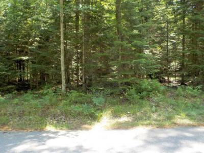 Photo of Lot 52 Daisy Dr, St Germain, WI 54558
