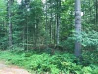 46 & 47 Woodland Ct, Woodruff, WI 54568