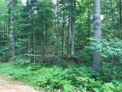 Photo of 46 & 47 Woodland Ct, Woodruff, WI 54568