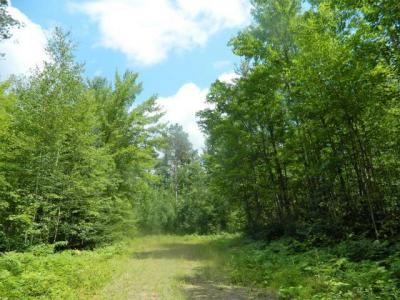 Photo of Lot 33 Lakeview Ct, Lac Du Flambeau, WI 54538