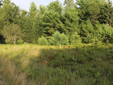 ON Eagle Waters Rd, Eagle River, WI 54521