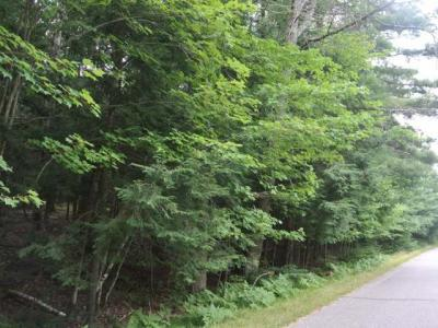 Photo of ON Four Mile Creek Rd, Three Lakes, WI 54562