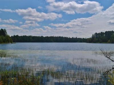 Photo of ON Star Lake Rd, Eagle River, WI 54560