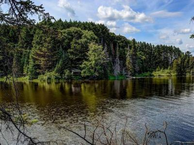 Photo of ON Cth B #Lot 2, Land O Lakes, WI 54540