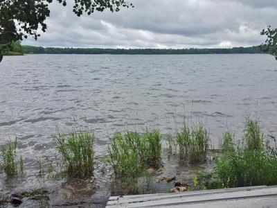 Photo of ON Birch Rd, Land O Lakes, WI 54540